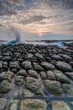 утесистый seashore Стоковые Фотографии RF