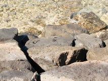 Утесы лавы в прибое Стоковое Изображение