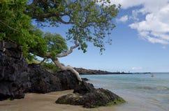 Утесы лавы на тенях пляжа Kaunaoa Стоковое Изображение
