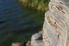 Утесы берега озера Стоковое Изображение RF
