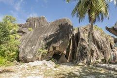 Утесы валунов и ладонь кокоса в острове Сейшельских островах Digue Ла Стоковое Фото
