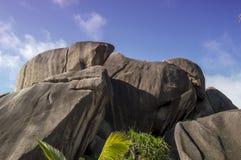 Утесы валунов и ладонь кокоса лист в острове Сейшельских островах Digue Ла Стоковое Изображение RF