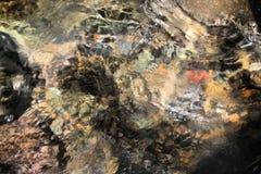 Утесы в воде Стоковые Фото