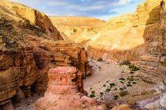 Утесы в долине под красным каньоном в пустыне около города Eilat, Isra Стоковые Фотографии RF