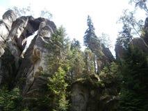 Утесы в лесе Стоковая Фотография