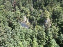Утесы в лесе Стоковая Фотография RF