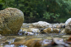 Утесы в реке Стоковое Изображение