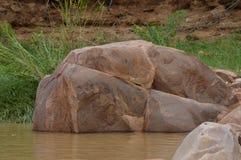 Утесы в реке Стоковая Фотография RF