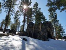 Утесы леса снега стоковые изображения