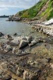 Утесы и малый пляж в острове Ammouliani, Athos, Chalkidiki, Греции Стоковые Фотографии RF