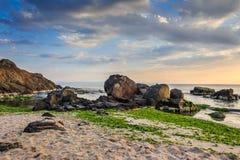 Утесы и морская водоросль на побережье песка моря Стоковые Фото