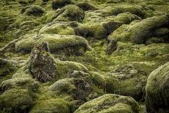 Утесы и мох Стоковые Изображения