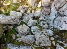 Утесы и мох Стоковое фото RF