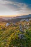 Утесы и древесина в ландшафте лета Стоковое фото RF