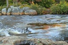 Утесы и Rapids реки лосей Стоковая Фотография RF