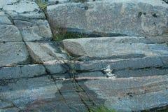утесы, камень, живая природа севера, Стоковое Фото