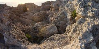 Утесы моря на солнечном свете стоковое фото