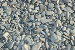Утесы моря ровные на береге Стоковая Фотография