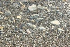 Утесы моря ровные на береге Стоковое Фото