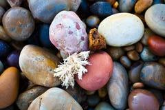 Утесы моря Стоковое Фото