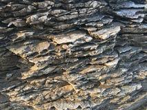 Утесы моря стоковые изображения rf