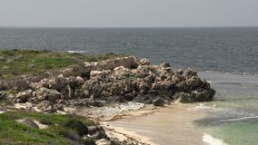 Утесы на заливе около городка Cervantes, западной Австралии сток-видео