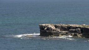 Утесы на заливе около городка Cervantes, западной Австралии видеоматериал