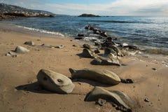 Утесы на пляже Laguna стоковое фото rf