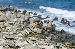 Утесы около моря Стоковые Изображения RF