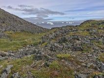Утесы острова Fogo, вегетация, айсберги Стоковое Изображение