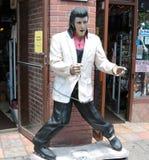 Утесы Elvis! Стоковое Изображение RF