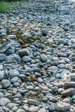 Утесы Green River Стоковое фото RF