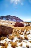 Утесы Nevado de toluca Xinantecatl стоковые изображения rf