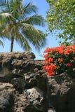 Утес 1 вулкана стоковые изображения