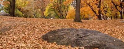 Утес в Central Park в Нью-Йорке осенью Стоковые Изображения RF