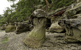 Утес гриба в гавани Montague, острове Galiano Канада Стоковое Фото