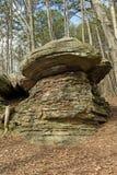 Утес гриба в лесе Стоковая Фотография