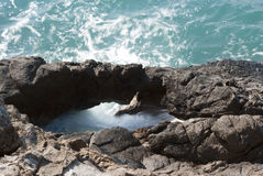Утес и море Стоковые Фото