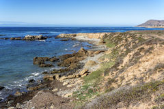 Утес и необыкновенные геологохимические образования во время отлива Стоковые Фото