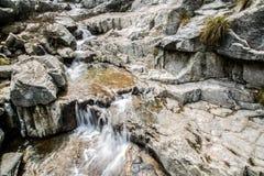 утес и река Стоковые Изображения