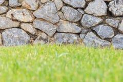 Утес и трава Стоковое Изображение