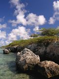 утес коралла стоковая фотография rf