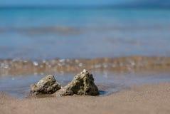 Утес коралла на пляже Стоковые Фотографии RF