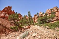 утес красного цвета каньона Стоковые Фото
