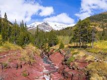 утес красного цвета каньона Стоковые Изображения