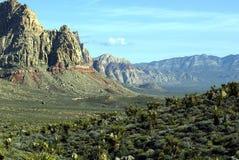 утес красного цвета каньона Стоковая Фотография
