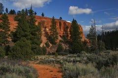 утес красного цвета каньона Стоковое Фото