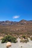 утес красного цвета каньона Стоковое Изображение