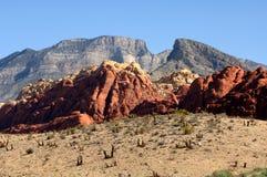 утес красного цвета Невады каньона Стоковые Фотографии RF