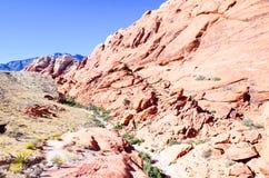 утес красного цвета парка Невады каньона национальный Стоковое Изображение